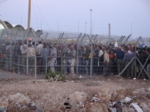 Palestinian workers at Efrain checkpoint into Israel